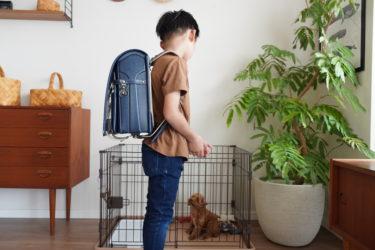 【ランドセル比較】4年目の中村鞄&2年目の土屋鞄