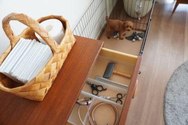 【犬と暮らす】わんこグッズと収納のこと